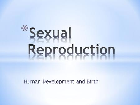 Human Development and Birth. The Male Reproductive System.