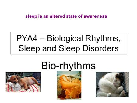 PYA4 – Biological Rhythms, Sleep and Sleep Disorders Bio-rhythms sleep is an altered state of awareness.