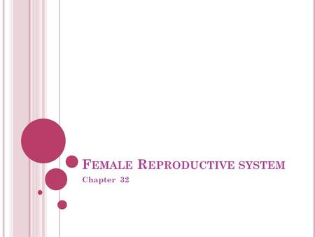 F EMALE R EPRODUCTIVE SYSTEM Chapter 32. P URPOSE OF THE FEMALE REPRODUCTIVE SYSTEM : Produce gamete Production of offspring Continuation of the genetic.