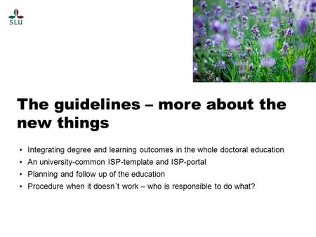 The guidelines – more about the new things Integrating degree and learning outcomes in the whole doctoral education An university-common ISP-template and.