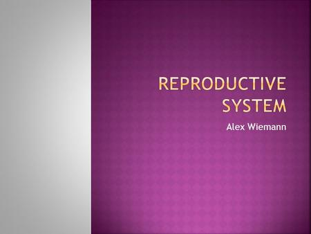 Alex Wiemann.  The function of the reproductive system is to produce offspring.