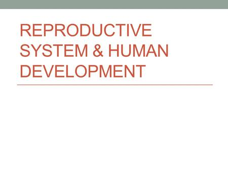 Reproductive System & Human Development