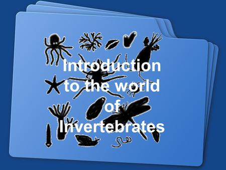 Introduction to the world of Invertebrates. 9/3/2015 Essential Functions for all organisms: 1. Respiration 2. Feeding/Digestive System 3. Response/Nervous.