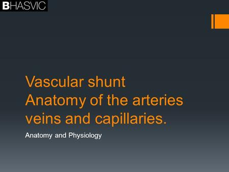 Vascular shunt Anatomy of the arteries veins and capillaries.