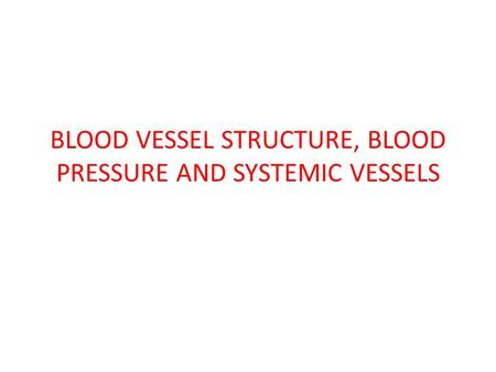 BLOOD VESSEL STRUCTURE, BLOOD PRESSURE AND SYSTEMIC VESSELS.