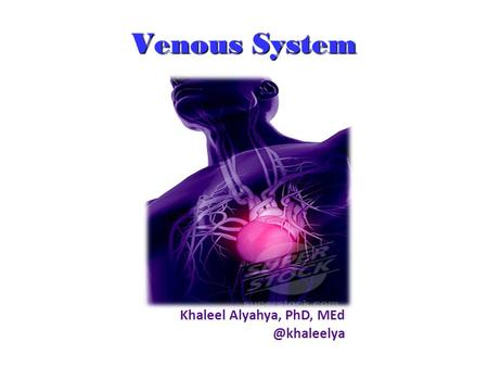Venous System Khaleel Alyahya, PhD, MEd @khaleelya.