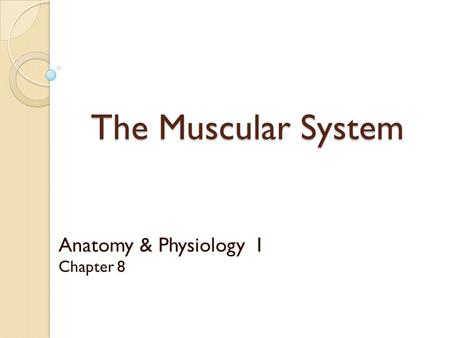 Anatomy & Physiology I Chapter 8