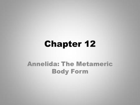 Annelida: The Metameric Body Form