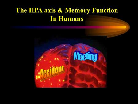 The HPA axis & Memory Function In Humans. Impact of stress on memory 2 principal effects Forget something due to stress e.g. wedding anniversary Vivid.