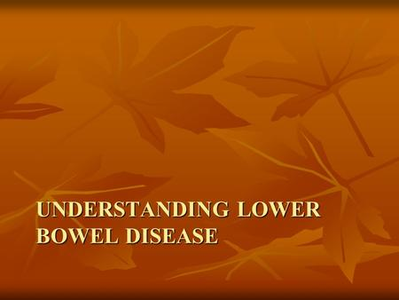 Understanding Lower Bowel Disease
