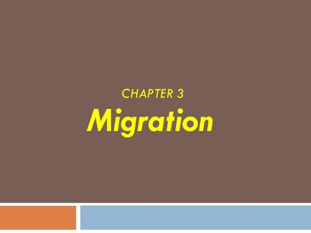 CHAPTER 3 Migration. Net Migration  The subject of this chapter is a specific type of relocation diffusion called migration, which is a permanent move.