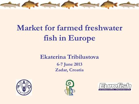 Market for farmed freshwater fish in Europe Ekaterina Tribilustova 6-7 June 2013 Zadar, Croatia.