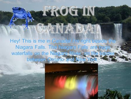 Frog IN CANADA! Hey! This is me in Canada! I'm right beside the Niagara Falls. The Niagara Falls are huge waterfalls on the Niagara River, on the border.