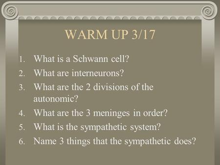 WARM UP 3/17 1. What is a Schwann cell? 2. What are interneurons? 3. What are the 2 divisions of the autonomic? 4. What are the 3 meninges in order? 5.