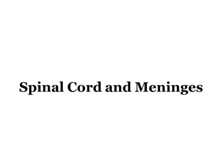 Spinal Cord and Meninges. Objectives: 1.Describe the segmental nature and external structure of the spinal cord. 2.Indicate the relationship of spinal.
