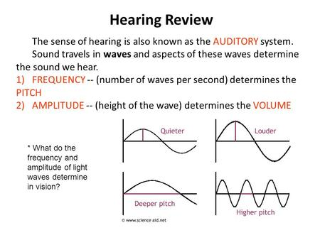 Hearing Review The sense of hearing is also known as the AUDITORY system. Sound travels in waves and aspects of these waves determine the sound we hear.