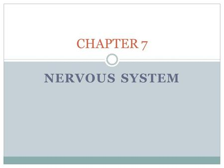 NERVOUS SYSTEM CHAPTER 7. ORGANS AND DIVISIONS OF THE NERVOUS SYSTEM Central Nervous System (CNS): Organs: Brain and spinal cord Peripheral Nervous System.