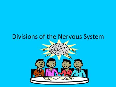 Divisions of the Nervous System 19.2. There are 2 main divisions of the nervous system. – 1. Central Nervous System – 2. Peripheral Nervous System.