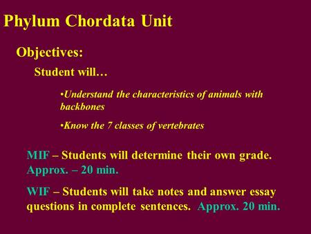 Phylum Chordata Unit Objectives: Student will… Understand the characteristics of animals with backbones Know the 7 classes of vertebrates MIF – Students.