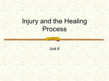 Injury and the Healing Process