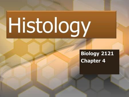 Histology Biology 2121 Chapter 4. Introduction Histology - the study of tissue Four Tissue Types –1. Epithelial –2. Connective Tissue –3. Muscle Tissue.