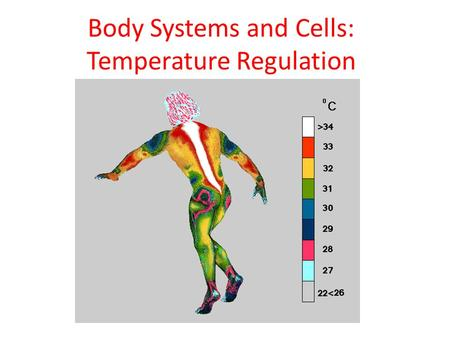 Body Systems and Cells: Temperature Regulation. I. How do living things stay alive in extreme temperatures? One of the characteristics of living things.