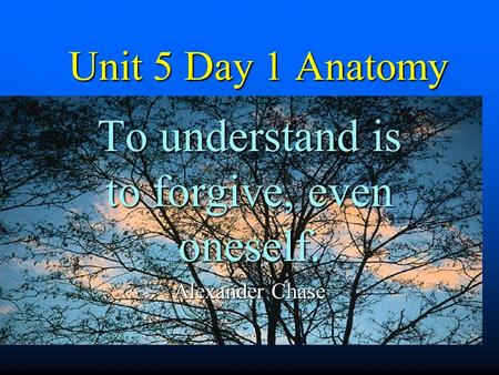 Unit 5 Day 1 Anatomy To understand is to forgive, even oneself. Alexander Chase.