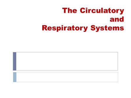 The Circulatory and Respiratory Systems. Learning Goals By the end of this unit you should be able to:  Identify and describe the main functions of the.