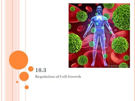 Regulation of Cell Growth