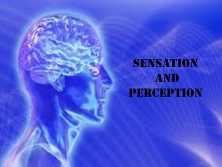 Sensation and Perception. Sensation Sensation: The process of detecting a stimulus (something that attracts the attention of a sensory organ) the stimulation.