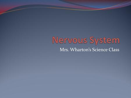 Mrs. Wharton's Science Class. Vocabulary Central nervous system- consists of brain and spinal cord Peripheral nervous system- consists of all the nerves.