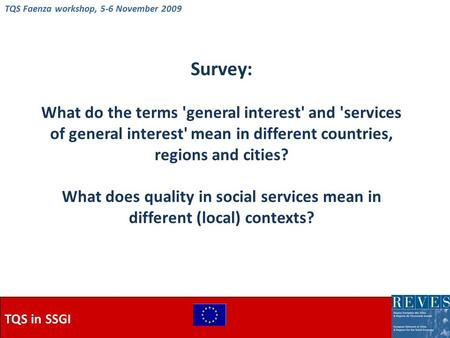 TQS in SSGI Survey: What do the terms 'general interest' and 'services of general interest' mean in different countries, regions and cities? What does.