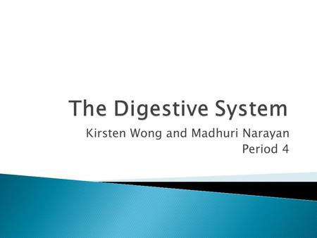 Kirsten Wong and Madhuri Narayan Period 4. What is the main purpose of the Digestive System?