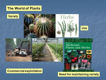 The World of Plants Variety Use Commercial exploitation Need for maintaining variety.