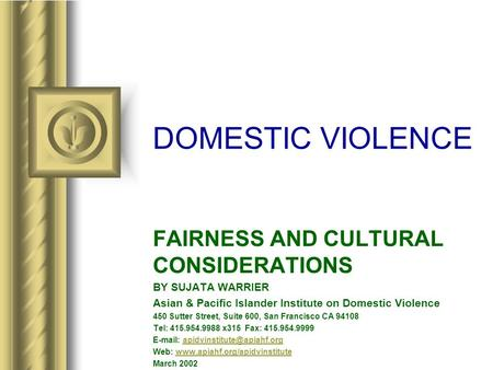 DOMESTIC VIOLENCE FAIRNESS AND CULTURAL CONSIDERATIONS BY SUJATA WARRIER Asian & Pacific Islander Institute on Domestic Violence 450 Sutter Street, Suite.