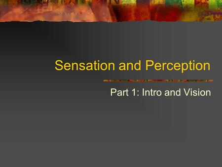 Sensation and Perception Part 1: Intro and Vision.