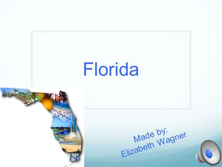 Florida Made by: Elizabeth Wagner Geographer Capital: Tallahassee Major cities: 1. Orlando 2. Tampa 3. Jacksonville One of the most famous mountain ranges,