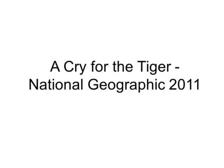 A Cry for the Tiger - National Geographic 2011. A tiger peers at a camera trap it triggered while hunting in the early morning in the forests of northern.
