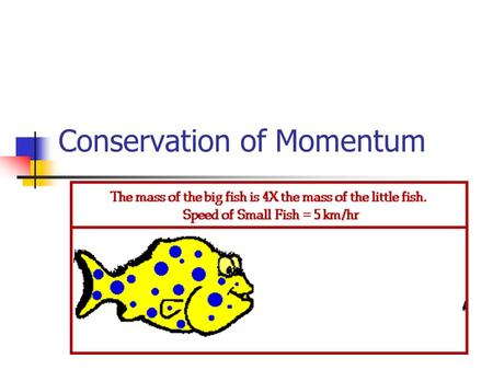 Conservation of Momentum. Conserved Total momentum of a system before and after an interaction remains constant Momentum before = Momentum After Two balls.