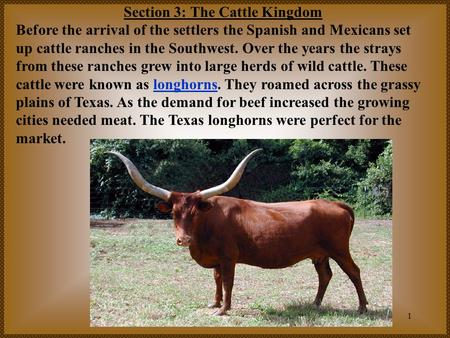 1 Section 3: The Cattle Kingdom Before the arrival of the settlers the Spanish and Mexicans set up cattle ranches in the Southwest. Over the years the.