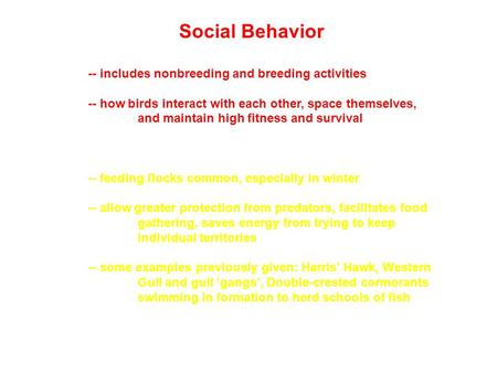 Social Behavior -- includes nonbreeding and breeding activities -- how birds interact with each other, space themselves, and maintain high fitness and.