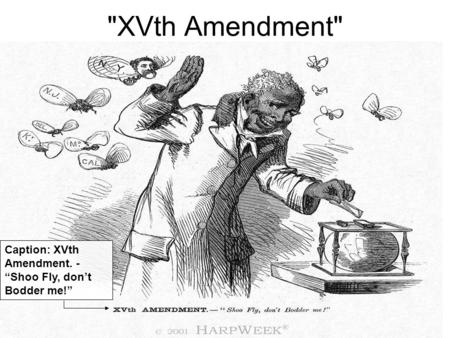 "XVth Amendment Caption: XVth Amendment. - ""Shoo Fly, don't Bodder me!"""