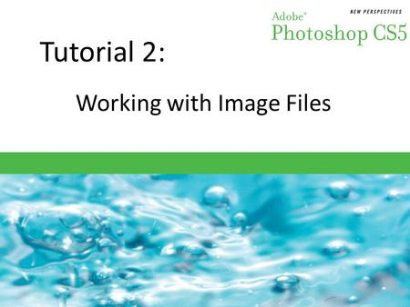 Tutorial 2: Working with Image Files. Objectives Session 2.1 Learn about file formats and their uses Change file type, file size, and resolution Examine.