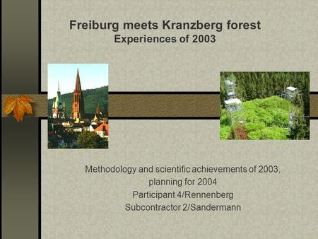 Methodology and scientific achievements of 2003, planning for 2004 Participant 4/Rennenberg Subcontractor 2/Sandermann Freiburg meets Kranzberg forest.