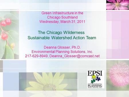 Green Infrastructure in the Chicago Southland Wednesday, March 31, 2011 Deanna Glosser, Ph.D. Environmental Planning Solutions, Inc. 217-629-8949,