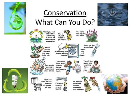 Conservation What Can You Do?. Cause for Concern Global Warming Air Pollution Water pollution (groundwater, rivers, lakes, etc.) Deforestation (habitat.