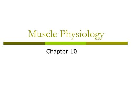 Muscle Physiology Chapter 10.