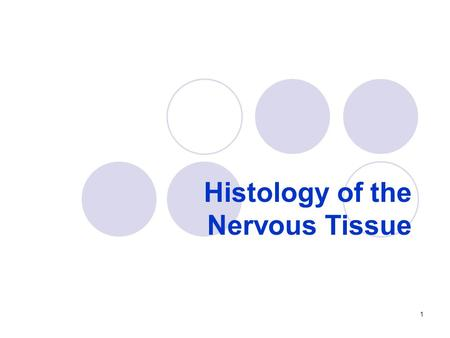 Histology of the Nervous Tissue 1. nervous system overview Nervous system  Monitors and processes sensory information from the environment and from within.