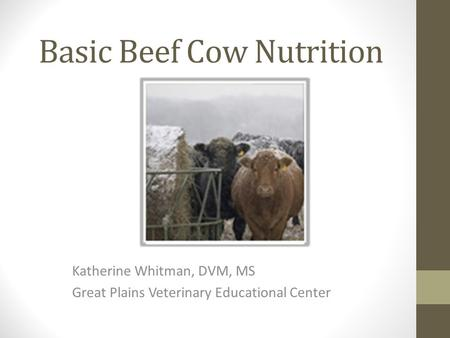Basic Beef Cow Nutrition Katherine Whitman, DVM, MS Great Plains Veterinary Educational Center.