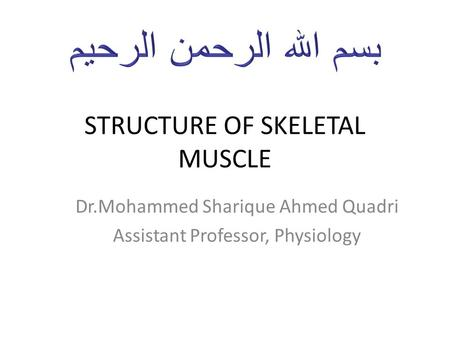 STRUCTURE OF SKELETAL MUSCLE Dr.Mohammed Sharique Ahmed Quadri Assistant Professor, Physiology.